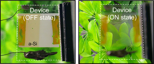 The ability to electrically control transparency and scattering of light is important for many optoelectronic devices; however, such versatility usually comes with additional unwanted optical absorption and power loss. Here we present a hybrid switchable solar window device based on polymer dispersed liquid crystals (PDLCs) coupled to a semiconducting absorber, which can switch between highly transmissive and highly scattering states while simultaneously generating power. By applying a voltage across the PDLC layer, the device switches from an opaque, light-scattering structure (useful for room light dimming, privacy, and temperature control) to a clear, transparent window. Further, enabled by the very low operating power requirements of the PDLC (<0.8 mW/cm2), we demonstrate that these switchable solar windows have the potential for self-powering with as little as 13 nm of a-Si.
