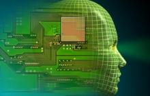 A discovery that has implications for the creation of artificial intelligence systems