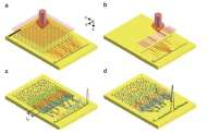 40 times wider bandwidth antenna connects nanoscale microprocessors to ultra-high-speed optical communications