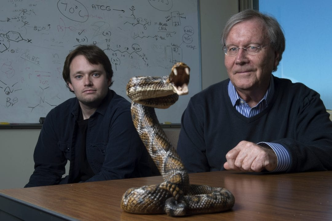 A new way to neutralize deadly snake venom more cheaply and effectively than with traditional anti-venom