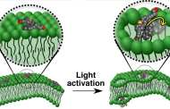 Nanomachine motorized molecules can drill into cells to deliver drugs or even kill the cell