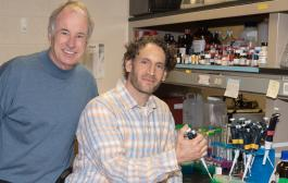 Discovery of a powerful pain reliever that acts on a previously unknown pain pathway