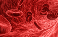 Spaser can find metastasized cancer cells in the blood stream and kill them