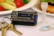 A new portable allergen-detection system includes a keychain analyzer