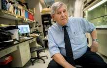 New drug effective against malaria