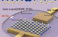 Atomically thin electronic memory devices of the future