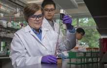 Gold nanoparticles could help make drugs act more quickly and effectively