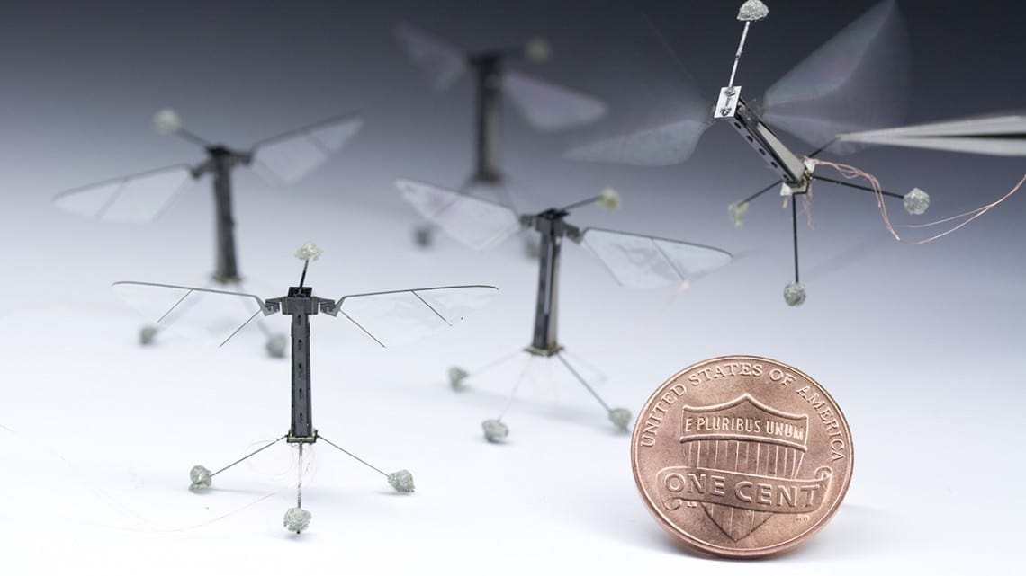 Programming tiny robots to think and move like insects