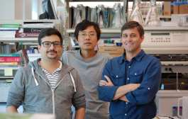 A master switch for programming cancer immunotherapy?