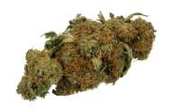 Medical cannabis, rather than opioids, are significantly safer for the elderly with chronic pain