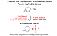 Click chemistry could simultaneously modify dozens of drugs or molecules to improve their disease-fighting properties