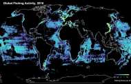 The global fishing fleet is so big it can be seen from space