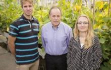 Scientists have improved how a crop uses water by 25 percent without compromising yield