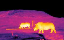 A collaboration to monitor rare and endangered species and stop poaching