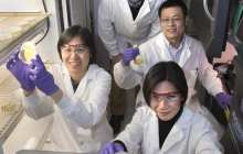 A possible pathway toward generating abundant biofuels and plant-derived bioproducts