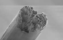 The strongest bio-material that has ever been made bests even steel and silk