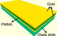 A new type of glass slide turns microscopes into thermometers enhancing scientific research worldwide