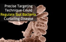 Using chemical compounds to target and inhibit the growth of specific microbes in the gut to help inhibit or stop disease