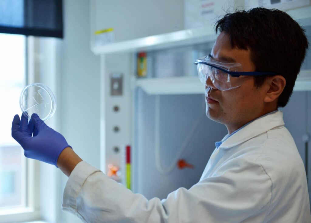 A transparent aerogel made from readily-available beer waste could