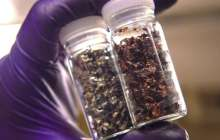 Enabling the economical recycling of lithium ion batteries