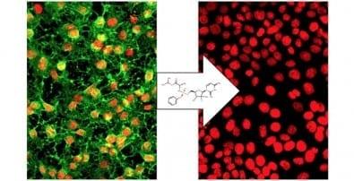 Sofosbuvir, a drug used to treat chronic hepatitis C, is