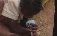 A new saliva test can detect malaria before people show signs of sickness