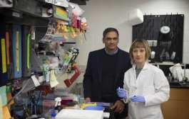 A surprise new treatment for rheumatoid arthritis?