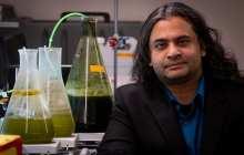 A fast way to turn algae to biocrude