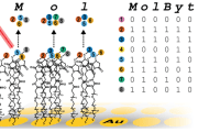 A new way to store information in molecules without energy could stably house data for millions of years