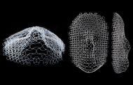 New morphing materials could lead to self-deploying tents or adaptive robotic fins
