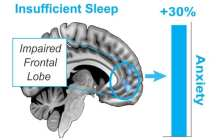 Sleep as a natural non-pharmaceutical remedy for anxiety disorders?
