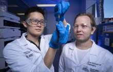 How about a new material that mimics skin, ligaments and bone, is very strong, self-healing and able to change shape?