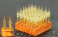 4D printed tiny needles could replace hypodermic needles