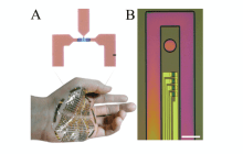 Flexible and powerful bioelectronic devices move closer