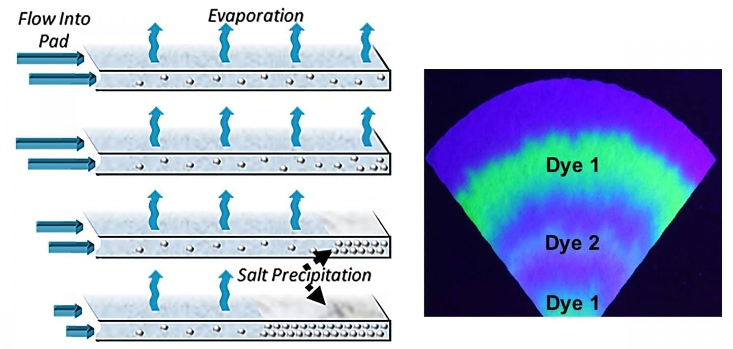 "The evaporation of sweat on paper pads could be used for fluid transport in wearables over long periods of time. The resulting dry layer of caked salts would preserve a""time-stamped"" record of biomarkers of interest. CREDIT Orlin D. Velev and co-authors, NC State University"