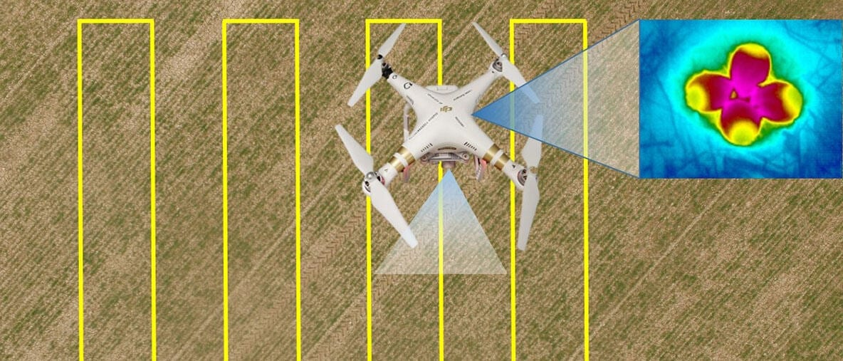 A drone hovering over a crop field carrying a thermal camera aimed at detecting lapwing nests on the ground.