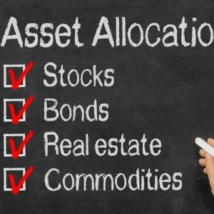 Alternative Investment Asset Allocation