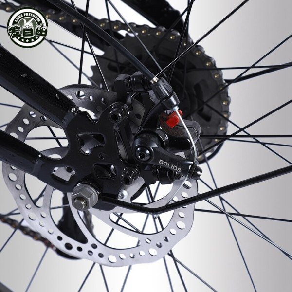 Love Freedom High Quality Bicycle 7 21 24 27 Speed 26 4 0 Fat Bike Front 5 Love Freedom High Quality Bicycle 7/21/24/27 Speed 26*4.0 Fat Bike Front And Rear Shock Absorbers double disc brake Snow bike