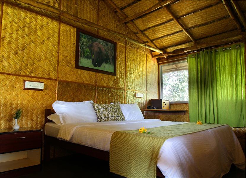 Resorts aroud Ooty Jungle Resorts near Ooty Ooty things