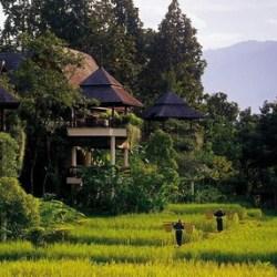Chiang Mai-tour operatogi.comr online Thailandia- InnViag