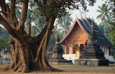 Templi e natura in Laos