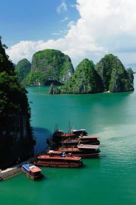 Esplora le oltre tremila isole di Halong Bay, nel Vietnam del nord.