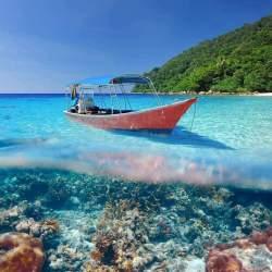 Escursioni Phuket & Phi Phi Island