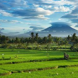 Paesaggi di Bali
