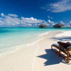 Sun Chair on the Beach