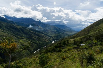 La natura della Valle del Baliem: meta ideale per il trekking