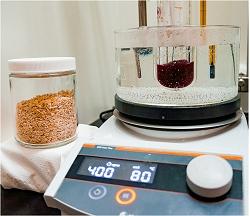 Biocombustíveis: Devemos usar gramíneas ou milho e cana-de-açúcar?
