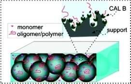 Microrreator: Química super fina gera polímero biodegradável em processo contínuo
