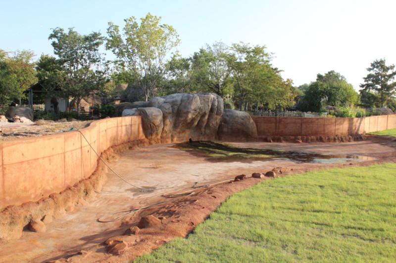 Elephant const 9-2-2015 (16)