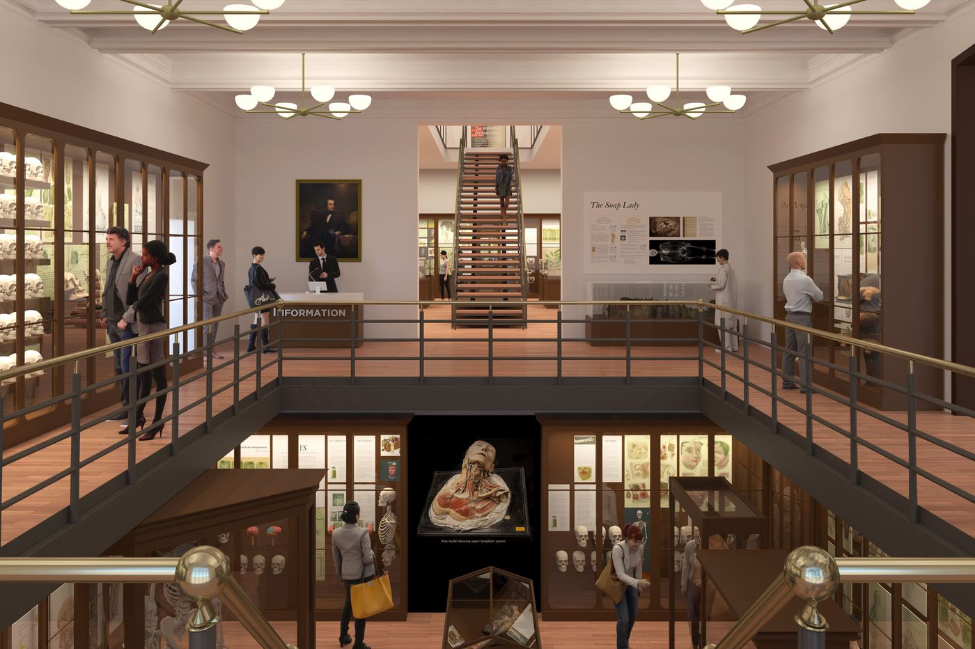 Mutter Museum launching 25 million expansion drive